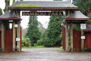 bamboo park glengarriff