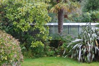 greenhouse bamboo park